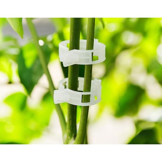 Objemka za steblo rastline paradižnika, sadnega drevja 10 ali 20 kos