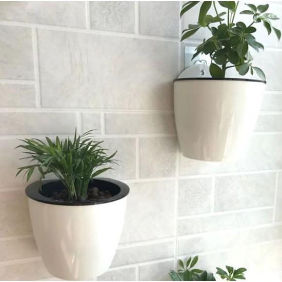 Lonček za rože/začimbe/kaktus za na steno